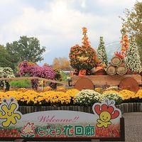 鳥取県立フラワーパークとっとり花回廊