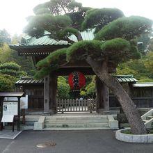 階段を登ったら、鎌倉の絶景