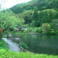 金鱗湖 写真