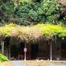屋根の上に草が? 素敵すぎます♪♪♪