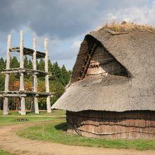 世紀の大発見!日本最大級の縄文集落跡