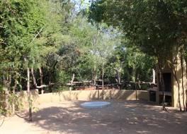 タイドン ブッシュ キャンプ 写真