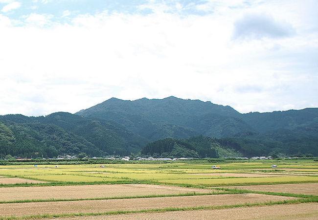 くんぱち山