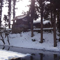写真:増島城跡