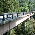 写真:高瀬大橋