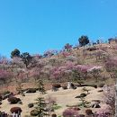 冠山総合公園