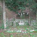 写真:一條教房の墓