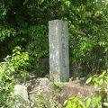 写真:山内政豊(良豊)の墓