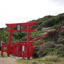 絶景にある不思議な稲成神社はお賽銭が高くつきました
