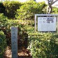 写真:石山貝塚