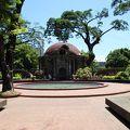 写真:パコ公園
