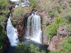 リッチフィールド国立公園ツアー