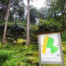 大曽根公園世界の椿園