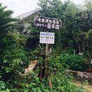 平賀源内旧邸 薬草園