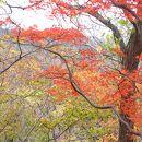 高館山展望台