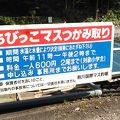 写真:秋川国際マス釣場