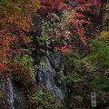 写真:辰子の鏡石
