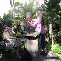 写真:バニース パウアヒ ビショップ王妃の像