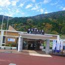 昭和の森会館