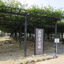 豊田熊野記念公園