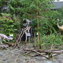企画展 恐竜時代の植物たち