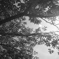 写真:能古島展望台