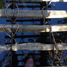 スリル満点のかずら橋