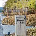 写真:鮨ダイニング天空