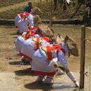 八坂神社御田祭
