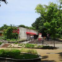 福岡市動植物園展望台 写真