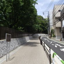 小石川植物園の東側の結構長くて急な坂です