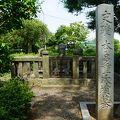 写真:本多作左衛門の墓