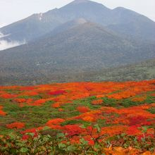 紅葉本州一番乗りの三ツ石山