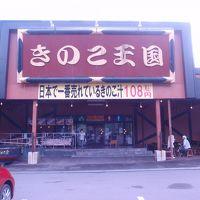 きのこ王国 仁木店