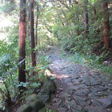箱根山中の旧東海道石畳