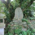 写真:松尾城跡