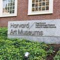 写真:ハーバード大学美術館