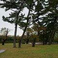 写真:秋田城跡(史跡公園)