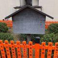 写真:日吉茶園