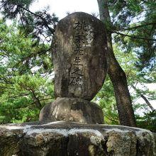 桂浜の龍馬像に向かう途中の松林の道の脇