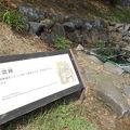写真:甲府城 水溜跡