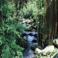 バリ州の文化的景観: トリ ヒタ カラナの哲学を表現したスバック システム