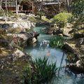 写真:新渓園