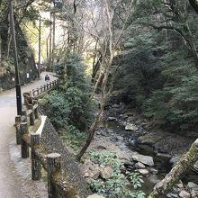 大滝を探して、、、箕面公園!!