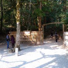 鏡の池がある森の入口