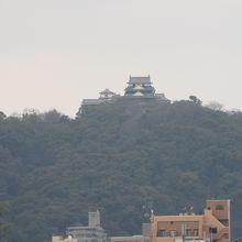 展望台から望む高松城