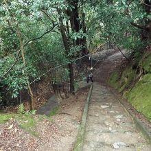 展望台の急な坂道