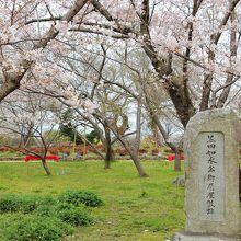 牡丹芍薬園(黒田如水隠居地)