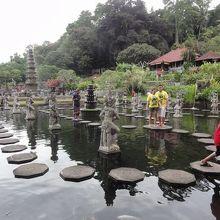 池のある広い公園