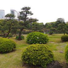ビル群の中にある庭園です